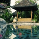 Relax by one of the pools